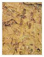 The historic treasure of the Spanish cave paintings